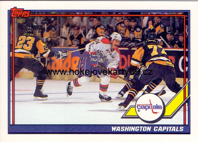 91-92 Topps - Washington Capitals č. 384