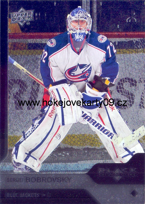 13-14 Black Diamond - Sergei BOBROVSKY č. 73