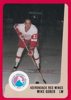 88-89 ProCards AHL/IHL - Mike GOBER