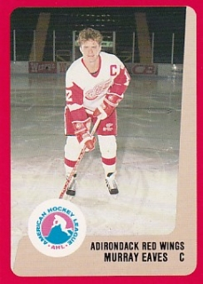 88-89 ProCards AHL/IHL - Murray EVANS