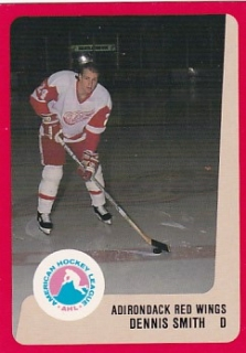 88-89 ProCards AHL/IHL - Dennis SMITH